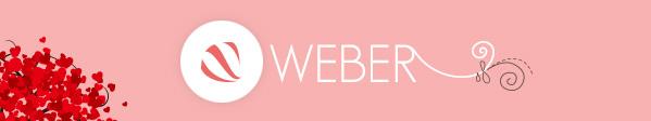 WEB姉妹が制作したWordPressサイトのご紹介 #wacja2012